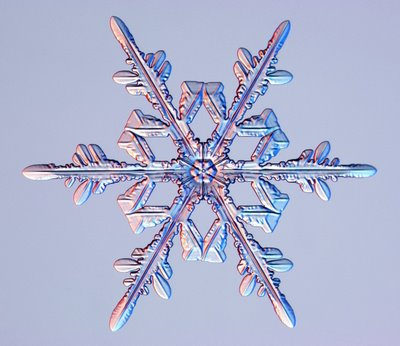 Snowflake_ice_crystals_1