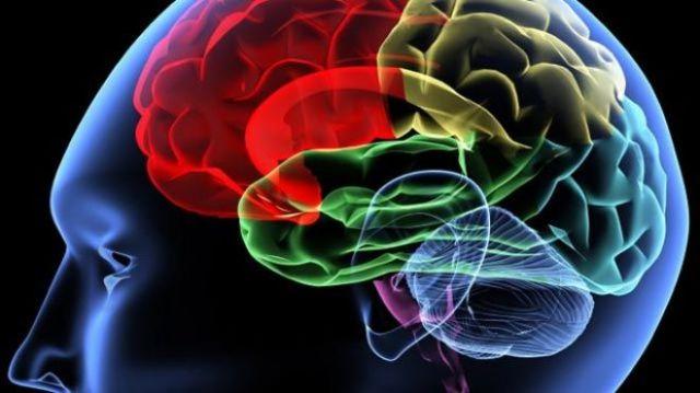 concussion 694940094001_1409784734001_640-brain