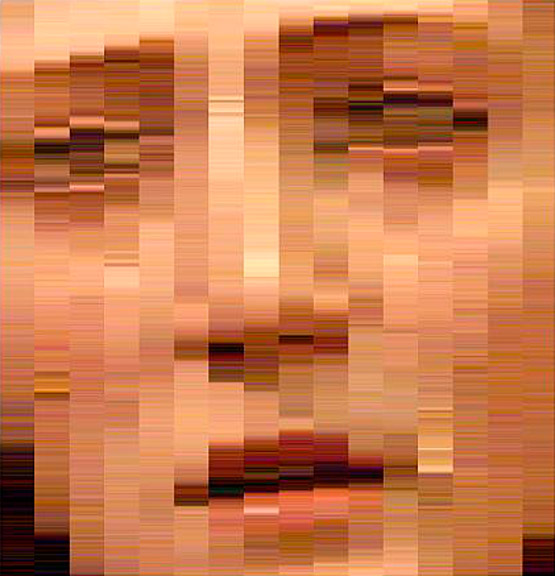 face_grid