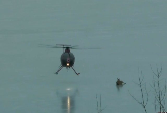 HELICOPTER-RESCUES-DEER-facebook